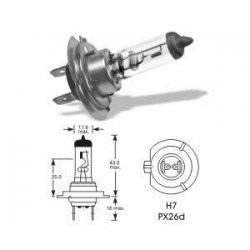 OSRAM12V55W P14,5S 64150ULT-HCB